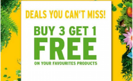 Buy 3 and get 1 Offer at The Body Shop, May 2016