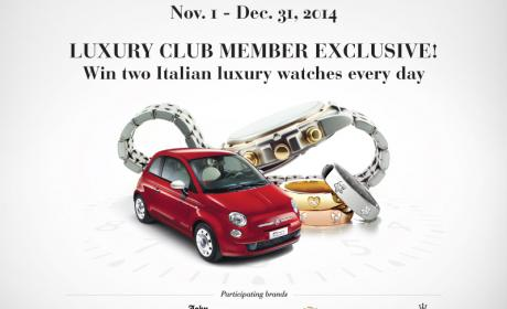 Special Offer at Paris Gallery, December 2014