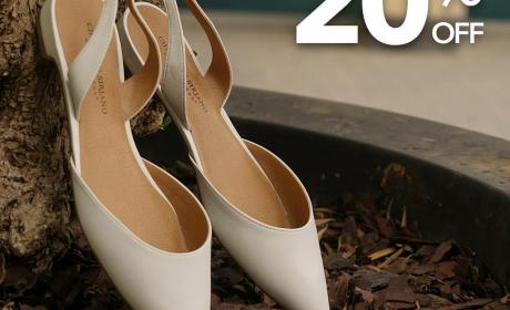 Up to 20% Sale at Payless, June 2017