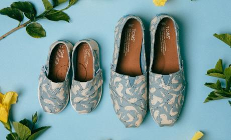 Special Offer at Toms Shoes, June 2018